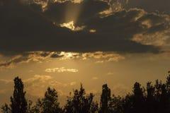 Mörka moln med solstrålar och trädstrålar fotografering för bildbyråer