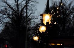 Mörkast natt med ljusast hopp Royaltyfri Bild