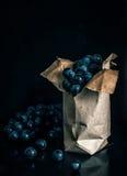 Mörker - blå druva på den svarta bakgrunden Fotografering för Bildbyråer
