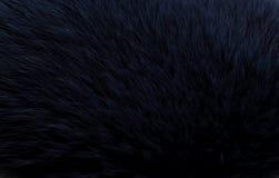 Mörker - blå päls Fotografering för Bildbyråer
