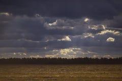 Mörker fördunklar över guld- fält Royaltyfri Fotografi