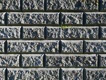 Mörker - grå tegelstenvägg med den grova strukturen som är bevuxen med grön mossatextur, bakgrund Royaltyfri Foto