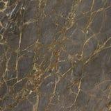 Mörker kritiserar, guld- sprickor, marmortextur, mörk brecciamineral Royaltyfri Bild