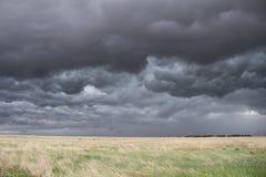 Mörker turbulent himmel över präriegräs Arkivbild