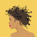 Mörkhyad flicka för framsida i profil Arkivfoto