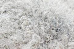 Mörkt abstrakt begrepp för textur för fårhudbakgrund Fotografering för Bildbyråer