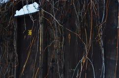 Mörkt gammalt staket fotografering för bildbyråer