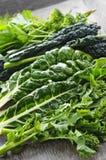 mörkt - gröna lövrika grönsaker Arkivfoto