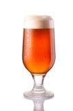 mörkt kallt öl i frostigt exponeringsglas som isoleras på vit royaltyfri fotografi