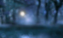 Mörkt mystiskt landskap med månsken Royaltyfria Bilder