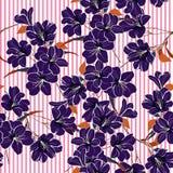 Mörkt purpurfärgat blomma blommar med bruna sidor på den rosa stren vektor illustrationer