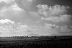 Mörkt svartvitt landskap för molnig morgon Arkivbild