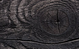 Mörkt trä Royaltyfri Bild