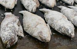 Mörtfisken som strilas med mjöl - ordna till för småfisk Arkivfoton