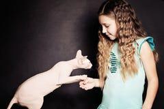 Möt katten Cild flicka och husdjur royaltyfria foton