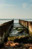 Möven, die auf Wellenbrecher sitzen Stockfoto