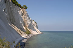 Møns Klint. The main attraction of Møn, the chalk cliff known as Møns Klint royalty free stock image
