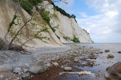 Møns Klint. Mons klint, denmark, chalk coast Royalty Free Stock Image