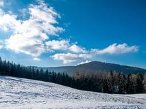 Mún paisaje del invierno de Herrenalb fotografía de archivo libre de regalías