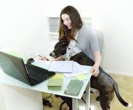 Mún perro del trabajo de oficina fotos de archivo libres de regalías