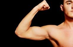 Músculo do bíceps de um homem atlético novo foto de stock