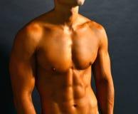 Músculos abdominais imagens de stock