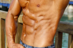 Músculos abdominais masculinos fotografia de stock royalty free