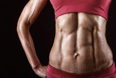 Músculos abdominales Fotos de archivo
