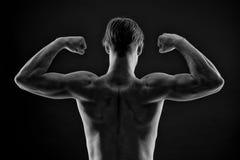 Músculos do braço do cabo flexível do halterofilista do homem Atleta com torso do ajuste, vista traseira Bíceps e tríceps da most fotos de stock