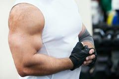 Músculos do halterofilista no braço Foto de Stock Royalty Free