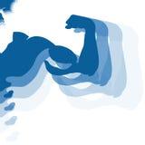Músculos humanos para el gimnasio Fotos de archivo