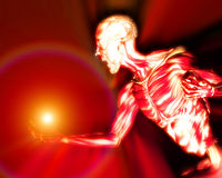 Músculos no corpo humano 14 ilustração stock
