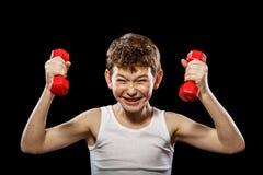 Músculos pequenos Imagens de Stock