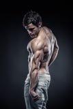 Músculos traseros de presentación modelo y tríceps de la aptitud atlética fuerte del hombre Foto de archivo libre de regalías