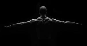 Músculos traseros en simetría imagenes de archivo
