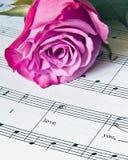 Música de amor Fotos de Stock