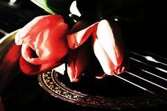 Música de amor, símbolos imagem de stock royalty free