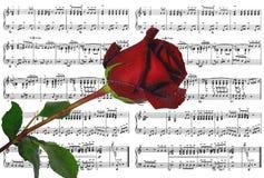 Música de folha Fotos de Stock