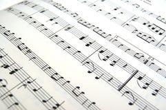 Música de folha Fotografia de Stock