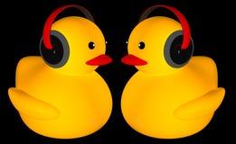Música de goma del anuncio del pato Fotografía de archivo libre de regalías