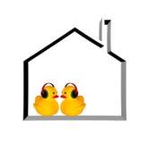 Música de goma del anuncio del pato Foto de archivo libre de regalías