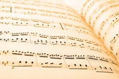 Música de hoja Foto de archivo libre de regalías