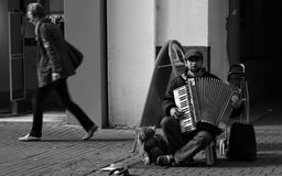 Música de la calle con el acordeón Fotos de archivo libres de regalías