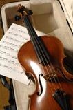 Música del violín y de hoja Foto de archivo