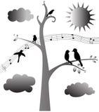 A música dos pássaros Imagens de Stock