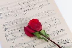 A música e levantou-se Fotos de Stock Royalty Free
