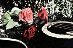 Música e natureza, símbolos fotografia de stock royalty free
