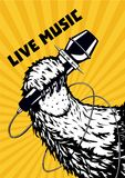 Música a o vivo Pata animal com microfone Fundo musical do cartaz para o partido do hip-hop Ilustração do vetor do estilo da tatu ilustração royalty free