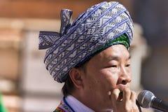Músico chinês com folhas - Verona Tocati imagens de stock royalty free