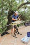 Músico de la calle en el parque Fotos de archivo